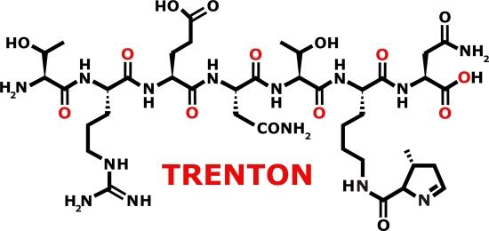 Trenton2